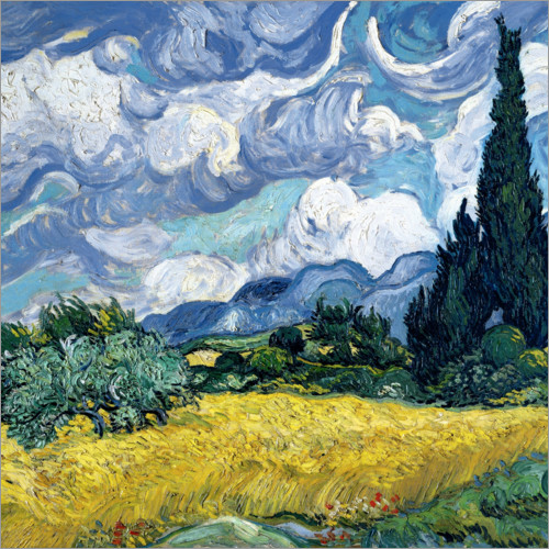 Premium poster Wheat field with cypresses
