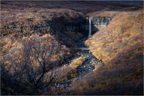 Premium poster Svartifoss waterfall in autumn on Iceland