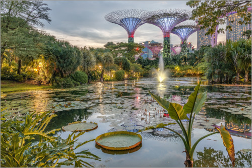 Premium poster Singapur Gardens by the Bay