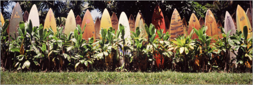 Premium poster A fence made of surfboards