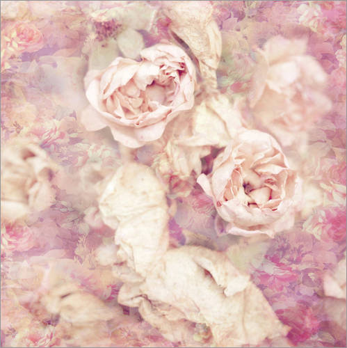 Wall sticker Faded roses