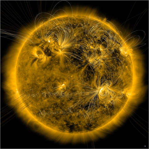 Wall sticker Magnetic field lines on the Sun.