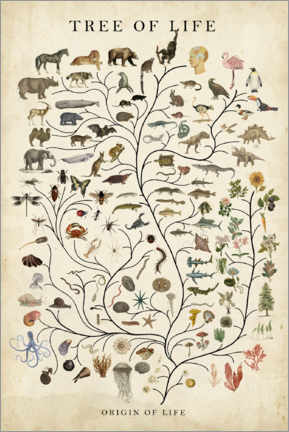 Foam board print  Tree of Life - Studio W
