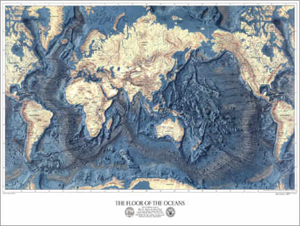 Canvas print  The floor of the oceans - Wunderkammer Collection