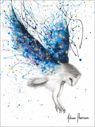 Acrylic print  The Spirit Owl - Ashvin Harrison