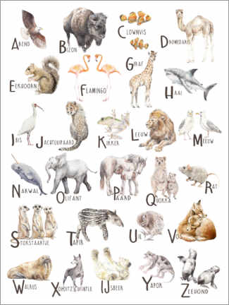 Gallery print  Animals A to Z Alphabet (Dutch) - Wandering Laur