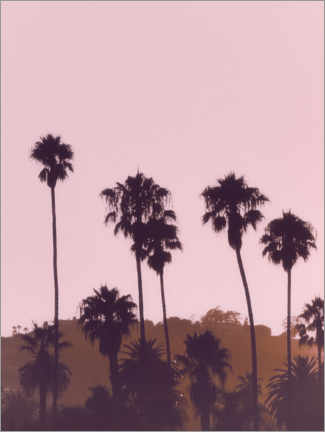 Gallery print  California Dreaming I - Magda Izzard