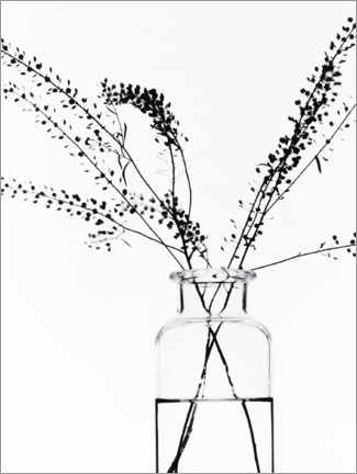 Aluminium print  Bottle with branches I - Magda Izzard
