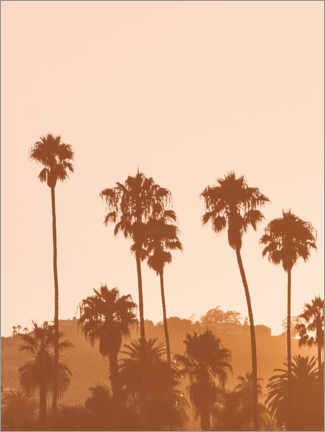 Wood print  California Dreaming II - Magda Izzard