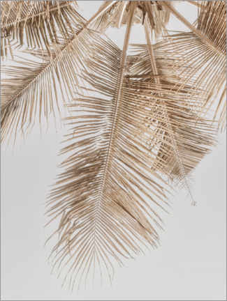 Canvas print  Golden palm II - Magda Izzard