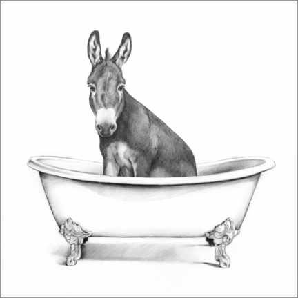 Aluminium print  Donkey in the Tub - Victoria Borges