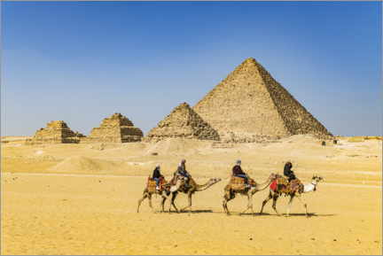 Canvas print  Camel riders in front of the pyramids of Giza - HADYPHOTO