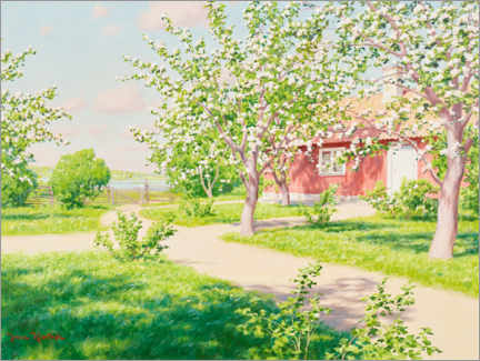 Canvas print  Blossoming apple tree with red hut - Johan Krouthén