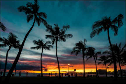 Canvas print  Palm trees in the sunset, Hawaii - Road To Aloha