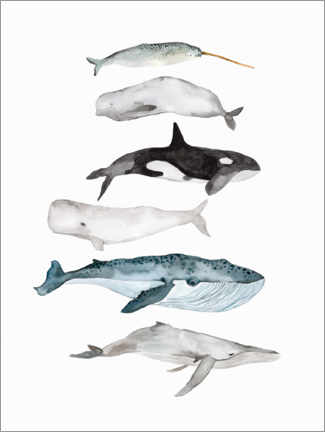 Canvas print  Sea Life   Whales - Mantika Studio