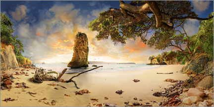 Premium poster Cathedral Beach with Te Hoho Rock at sunset