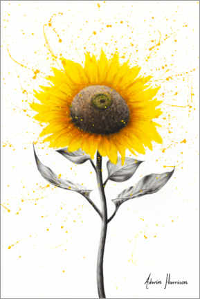Premium poster  Sunflower Celebration - Ashvin Harrison