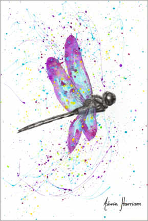 Canvas print  Dancing dragonfly - Ashvin Harrison