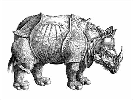 Colouring poster The rhino