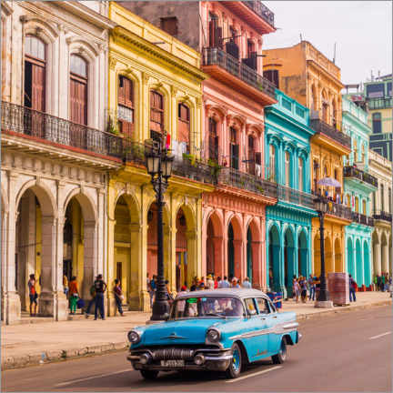 Canvas print  Classic car in Havana, Cuba - Julian Peters
