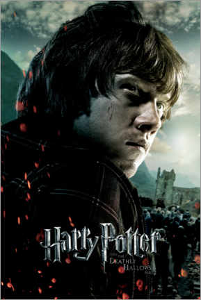 Premium poster  The Deathly Hallows II - Ron