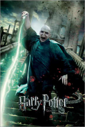 Acrylic print  The Deathly Hallows II - Voldemort Duel