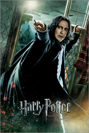 Acrylic print  The Deathly Hallows II - Severus Snape Duel