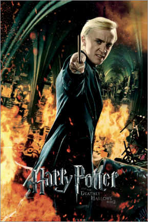 Canvas print  The Deathly Hallows II - Draco Malfoy