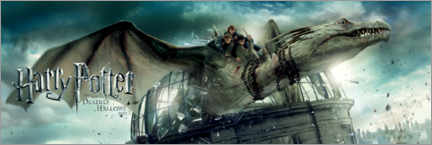 Premium poster  The Deathly Hallows II - Dragon