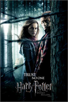 Wall sticker  The Deathly Hallows I - Hermione & Ron