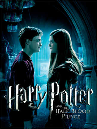 Canvas print  The Half-Blood Prince - Harry & Ginny