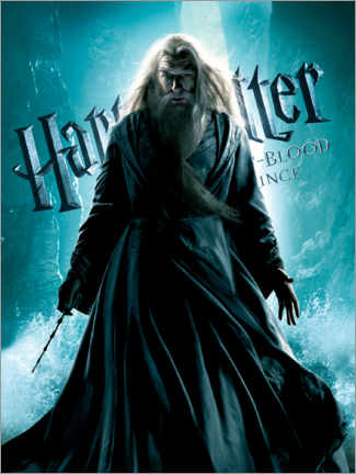 Wall sticker  The Half-Blood Prince - Albus Dumbledore