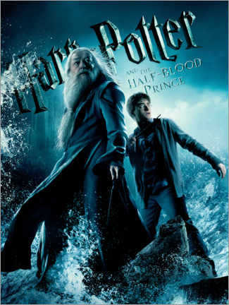 Premium poster  The Half-Blood Prince - Harry & Dumbledore
