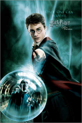Acrylic print  The Order of the Phoenix - Harry Potter