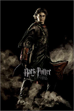 Premium poster  The Goblet of Fire - Harry Potter