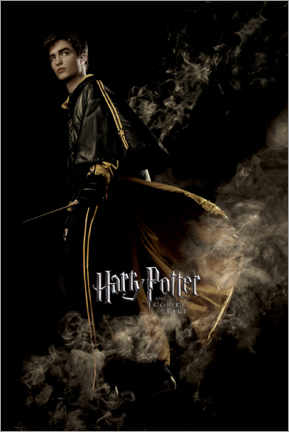 Premium poster  The Goblet of Fire - Cedric Diggory