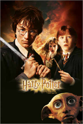 Premium poster Harry Potter and the Chamber of Secrets