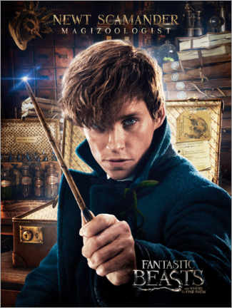 Premium poster  Fantastic Beasts and Where to Find Them - Newt Scamander