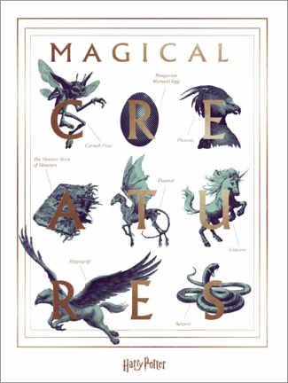 Premium poster  Harry Potter - Magical Creatures