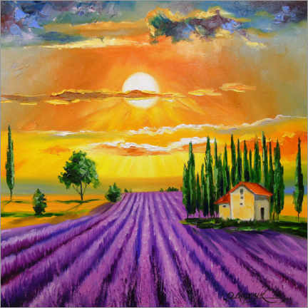 Canvas print  Sunset over the  lavender field - Olha Darchuk