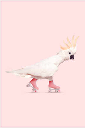 Canvas print  Rollerskating Cockatoo - Jonas Loose