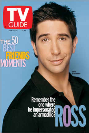 Premium poster  Ross - Friends - TV Guide