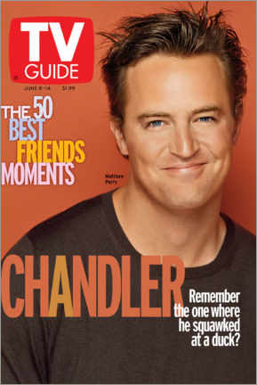 Aluminium print  Chandler - Friends - TV Guide