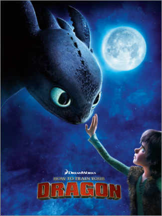 Foam board print  How to Train Your Dragon