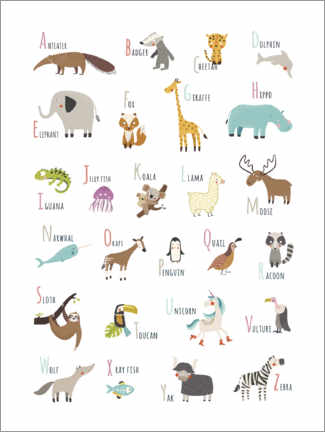 Aluminium print  A to Z animal alphabet - Marta Munte