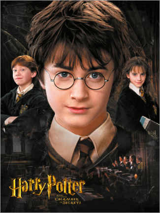 Foam board print  Harry Potter and the Chamber of Secrets