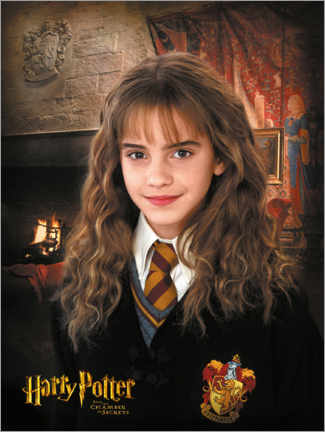Acrylic print  Hermione and the Chamber of Secrets