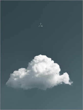 Foam board print  Bird and cloud - Lukas Saalfrank