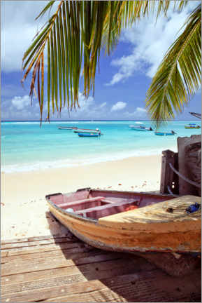 Acrylic print  Boat at shore, Barbados - Matteo Colombo