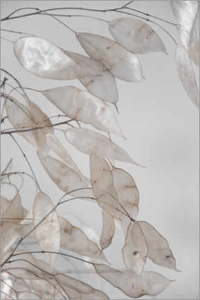 Foam board print  Abstract branches - collection from the forest in beige & white - Studio Nahili